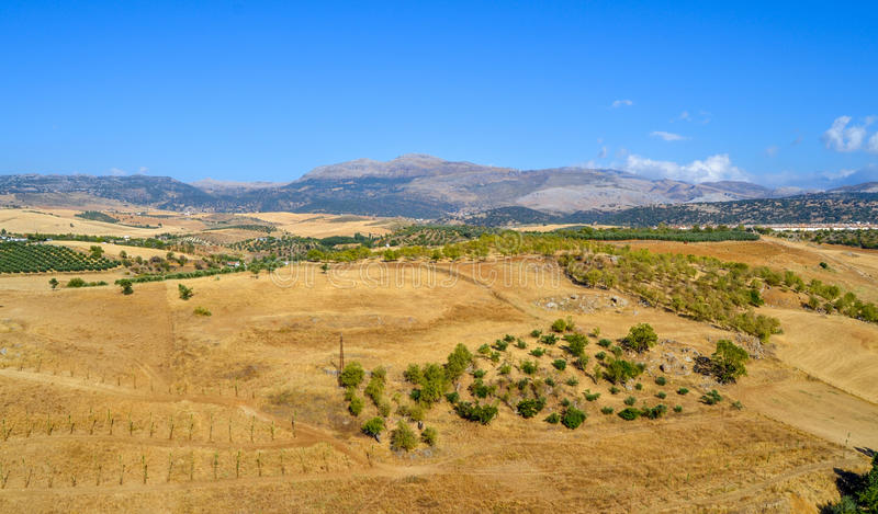 Panoramic View Of Summer Andalusian Lanscape Near Ronda, Province Of Malaga, Spain royalty free stock image