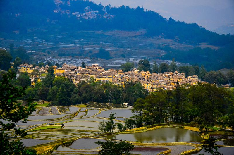 Panoramic view of Village of hani people over terraced rice fields in Yuanyang, Yunnan Province of China. Agriculture, asia, beautiful, country, countryside stock images