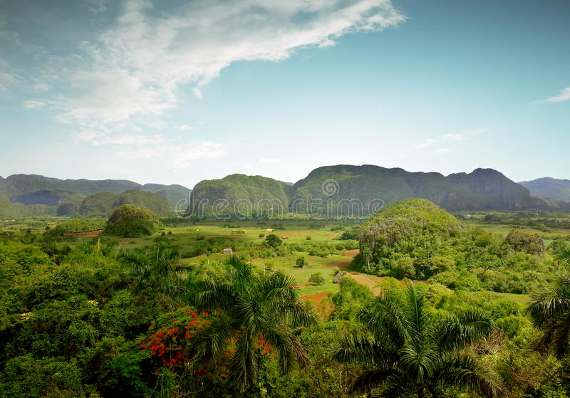Panoramic view of the Vinales Valley in Cuba stock photography
