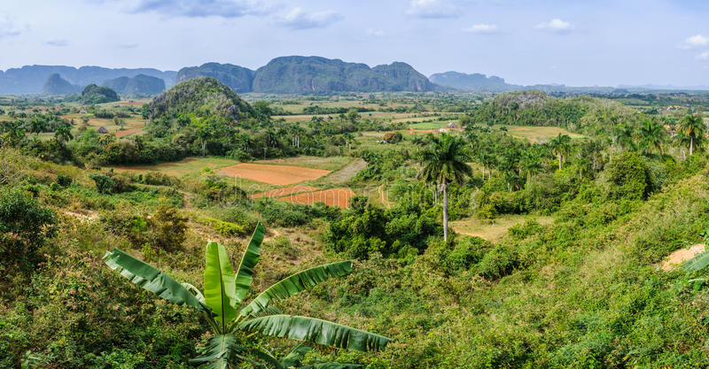 Panoramic view in Vinales Valley, Cuba royalty free stock photography