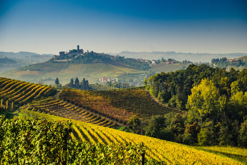Panoramic view of a vineyard in Langhe region during autumn stock photo