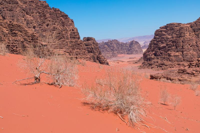 Panoramic view of the Wadi Rum desert, Jordan.  stock photography