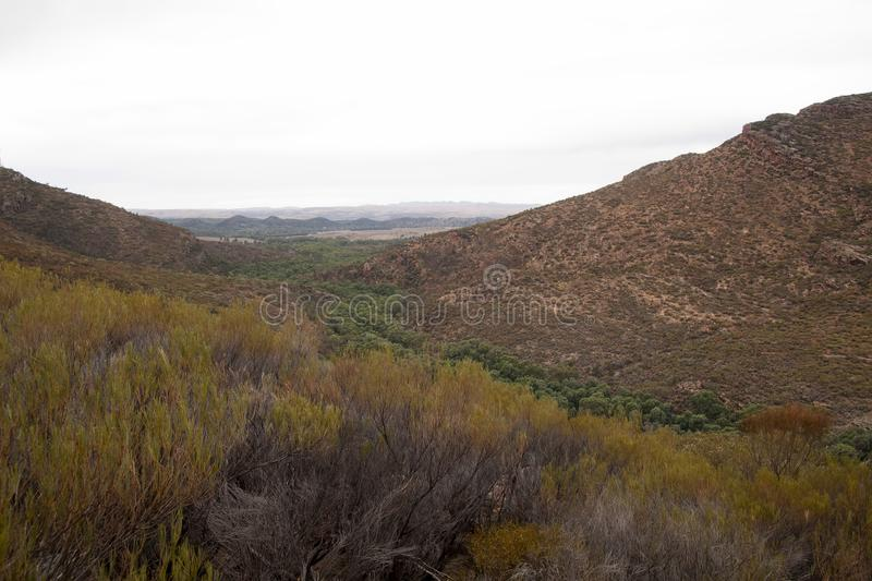 Panoramic view of Wilpena creek and gap stock image