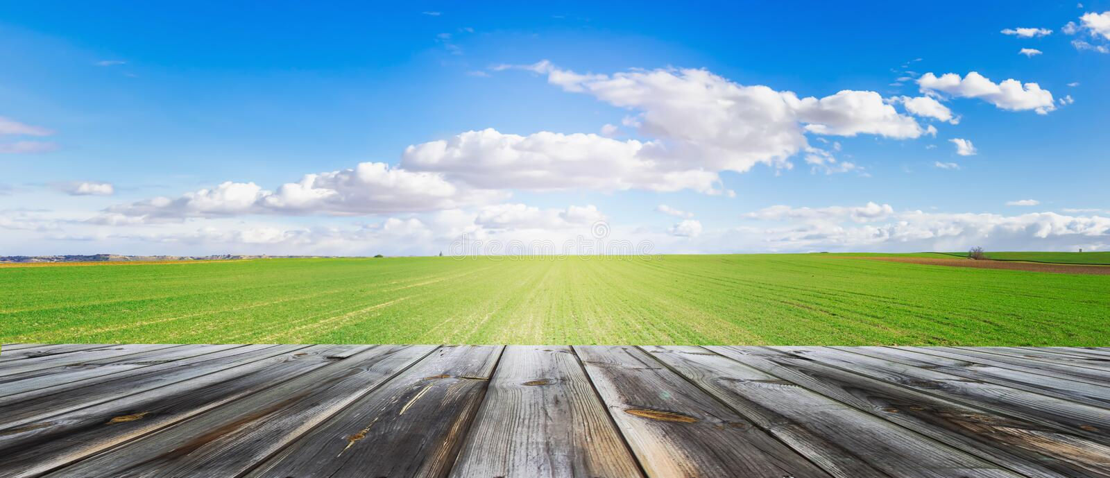 Panoramic view of wooden table top with fresh green field and blue sky in summer. Space for present a product. Panoramic view of wooden table top with fresh stock image