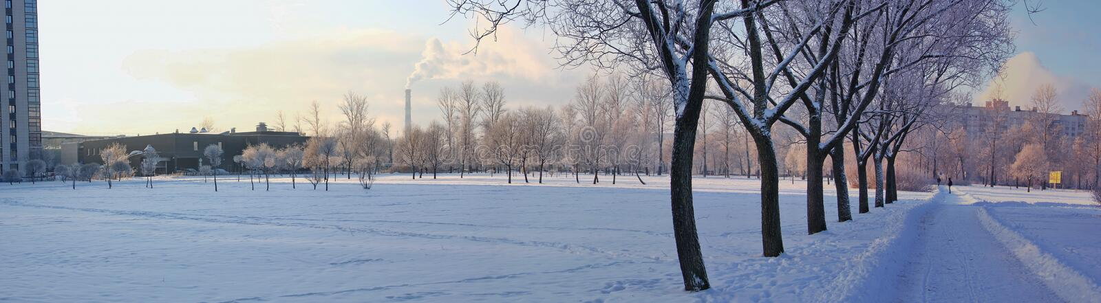Panoramic views of city park in winter. The avenue of trees in the foreground, away from white frost, the trees, the tower with the steam, homes stock image