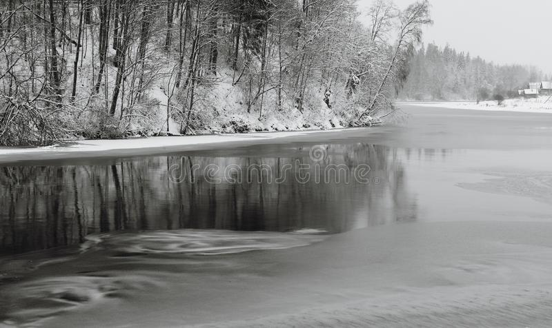 Panoramic winter landscape with line of trees reflecting in water. New Years background. Black and white photograph. Panoramic winter landscape with line of royalty free stock image