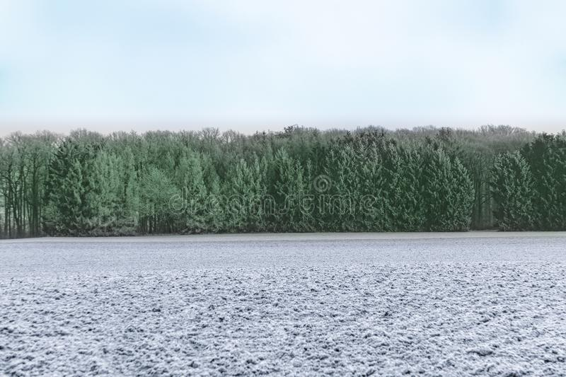 Panoramic winter landscape in rural area in Idstein. Germany stock photo