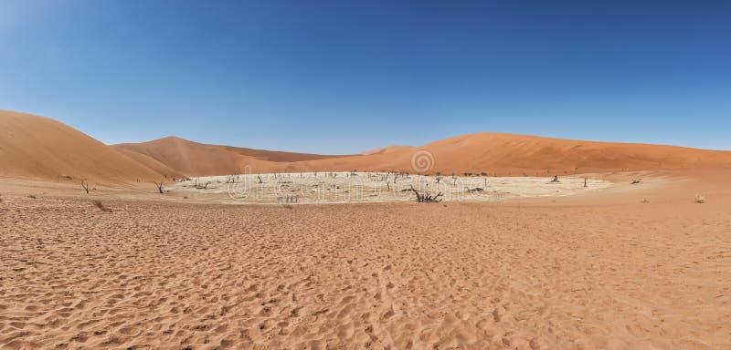 Panoramica de vley de la mort dans le désert de la Namibie Sossusvlei photographie stock