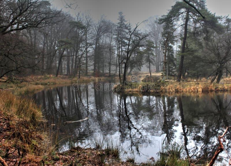 Panoramica del lago in autunno fotografie stock