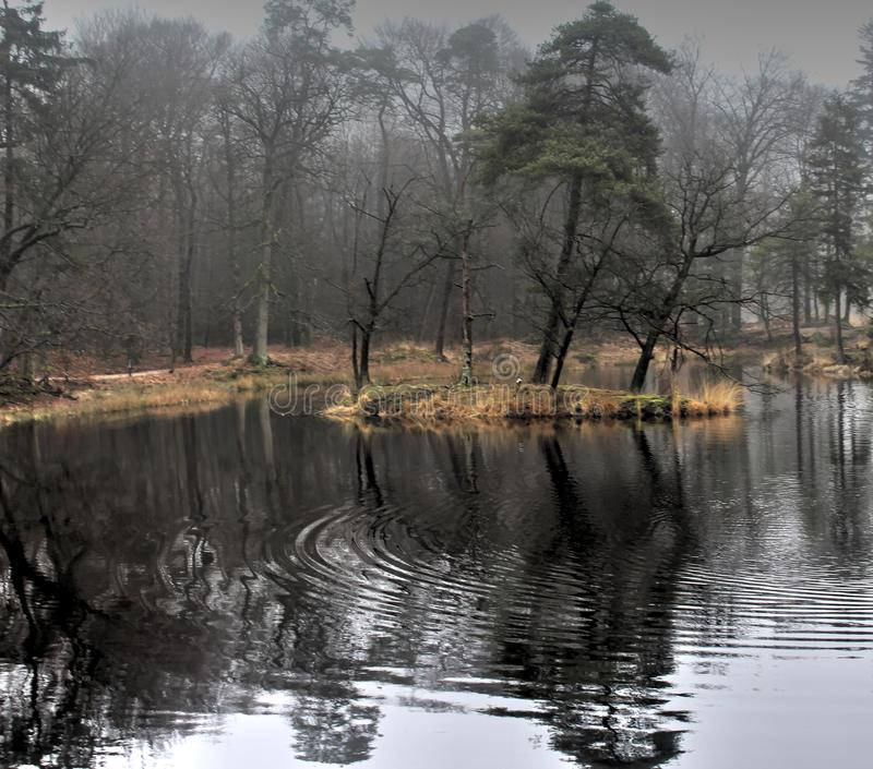 Panoramica del lago in autunno immagine stock
