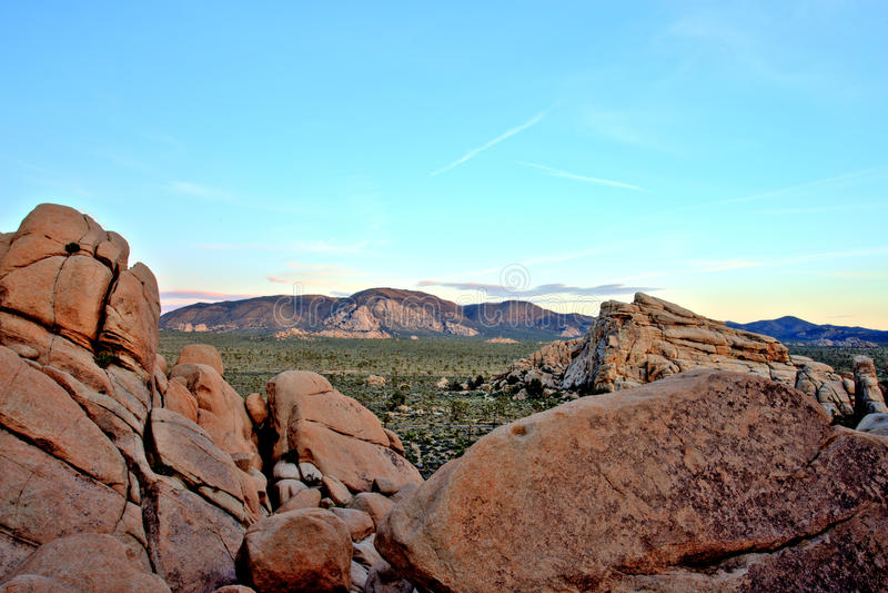 Panoramica di Joshua Tree National Park al tramonto, U.S.A. immagine stock