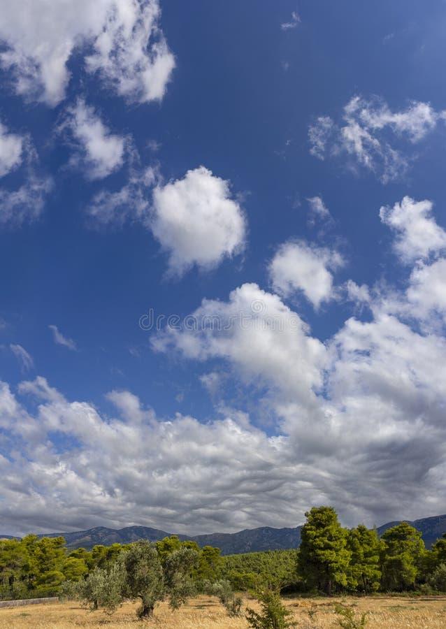 Panoramico di Giant Cumulus nuota asperato prima della tempesta estiva che si avvicina in un villaggio dell'isola greca di Evia fotografia stock