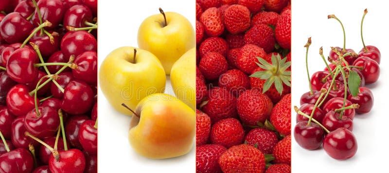 Panoramiczne inkasowe świeże i zdrowe owoc odizolowywać na bielu obrazy royalty free