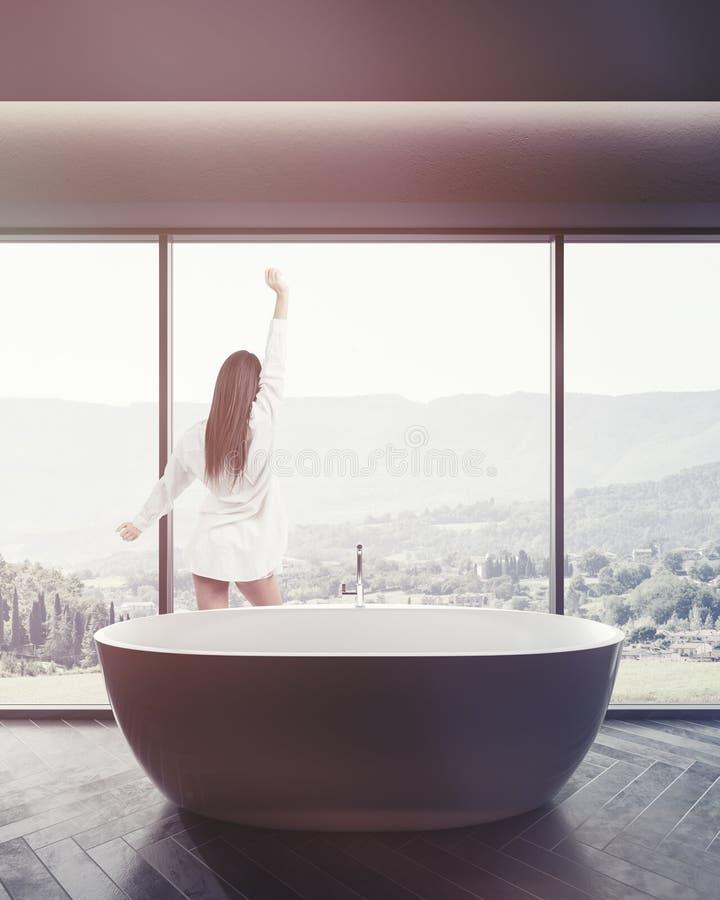 Panoramiczny łazienki wnętrze, brown wanna tonująca ilustracji