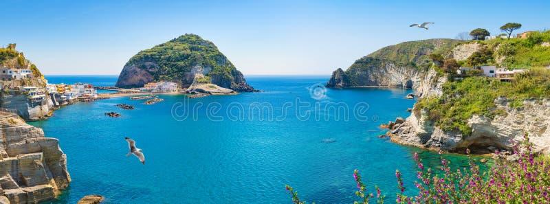 Panoramiczny kolaż sąsiedztwo mała wioska Sant «Angelo, Ischia wyspy, Włochy obrazy stock