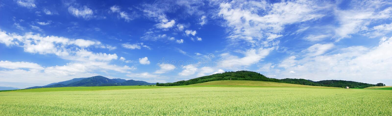 Panoramiczny krajobraz, widok zieleni pola i niebieskie niebo, zdjęcia royalty free