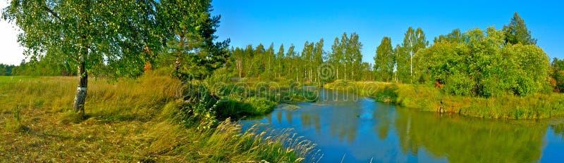 Panoramiczny krajobraz z brzozy rzeką i drzewem obrazy stock