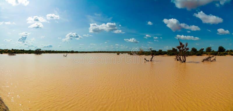 Panoramiczny krajobrazowy widok Sahel Dogon Tabki z zalewającą rzeką i oaza, Dogondoutchi, Niger zdjęcia royalty free
