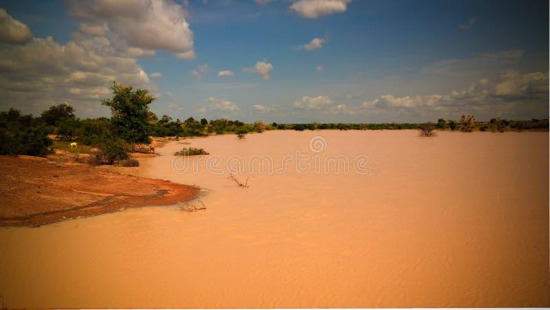 Panoramiczny krajobrazowy widok Sahel Dogon Tabki z zalewającą rzeką i oaza, Dogondoutchi, Niger zdjęcie royalty free