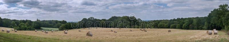 Panoramiczny Round baller w łąkach zdjęcia stock
