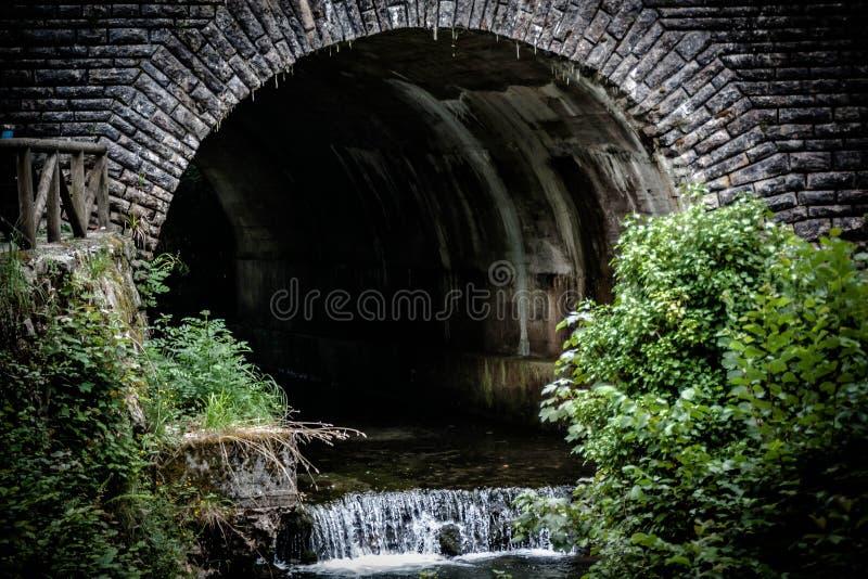 Panoramiczny tunel w naturze z małą siklawą i roślinnością fotografia royalty free