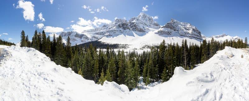 Panoramiczny widok Alpejskie góry obrazy royalty free