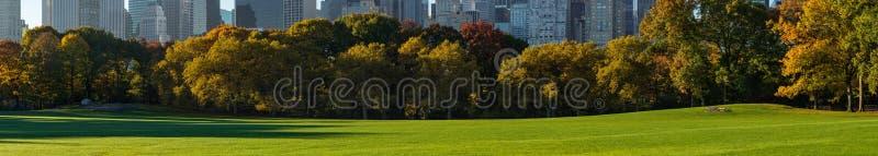 Panoramiczny widok central park cakli łąka Manhattan, nowy jork miasto obraz royalty free