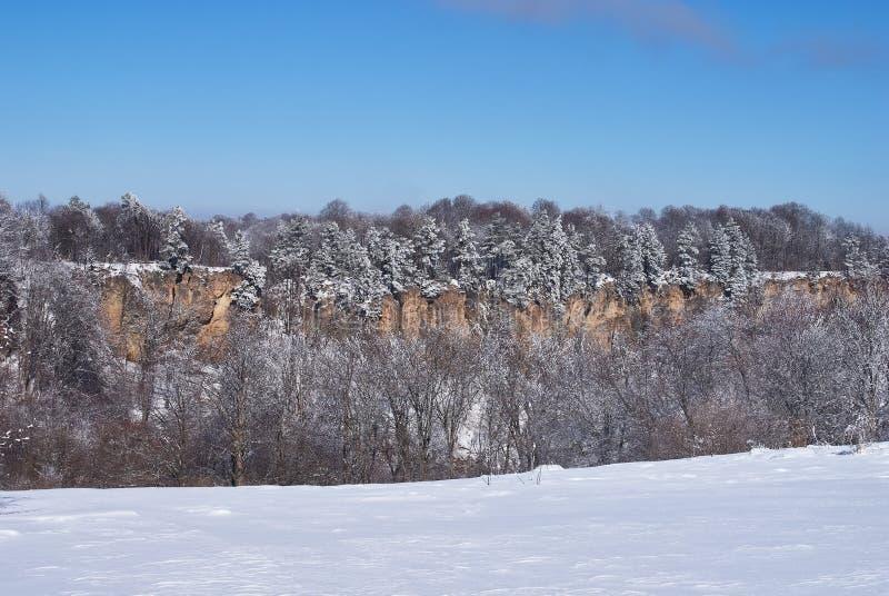 Panoramiczny widok falezy W przedpolu śnieżny las w tle, - niebieskie niebo Lago-Naki Główna Kaukaska grań, obraz stock