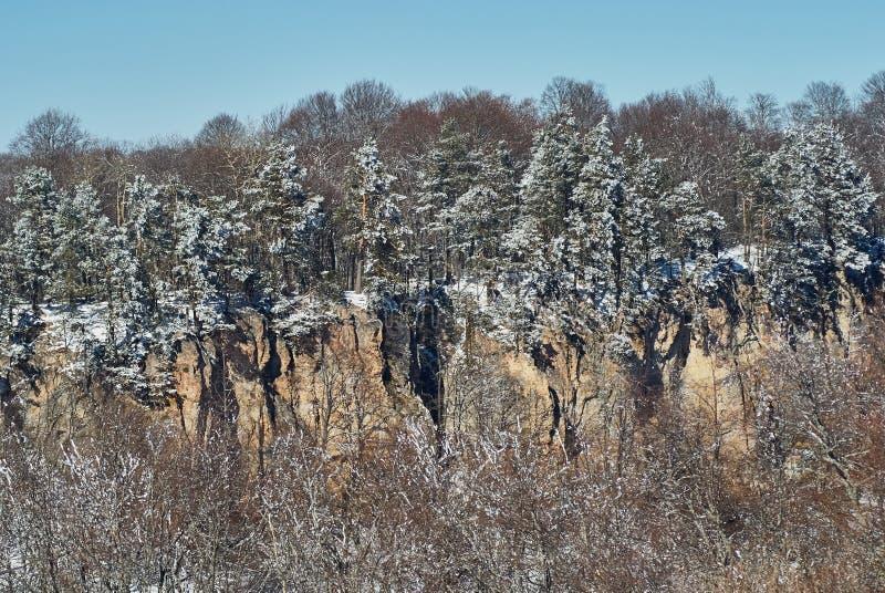 Panoramiczny widok falezy W przedpolu śnieżny lasowy Lago-Naki Główna Kaukaska grań, Rosja zdjęcia royalty free