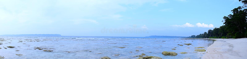 Panoramiczny widok Lazurowa woda morska, Nieskazitelna plaża, Nabrzeżna roślinność i Jasny niebieskie niebo, Skalista i Piaskowat zdjęcie royalty free