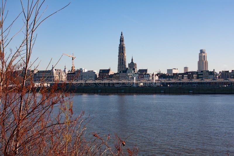 Panoramiczny widok linia horyzontu Antwerp zdjęcie royalty free