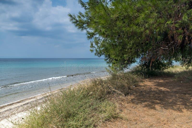 Panoramiczny widok Litheri plaża przy Sithonia półwysepem, Chalkidiki, Środkowy Macedonia, Grecja zdjęcia stock