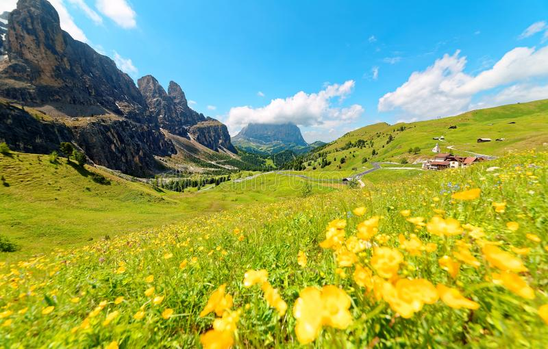 Panoramiczny widok majestatyczne Dolomiti góry z uroczymi dzikimi kwiatami kwitnie w zielonej trawiastej dolinie na jaskrawym pog obrazy royalty free