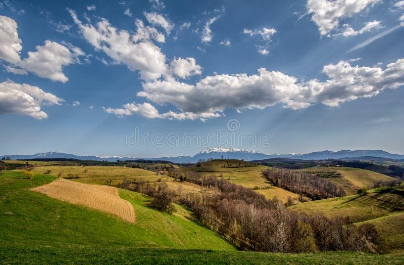Panoramiczny widok nad Karpacką górą w Transylvania fotografia royalty free