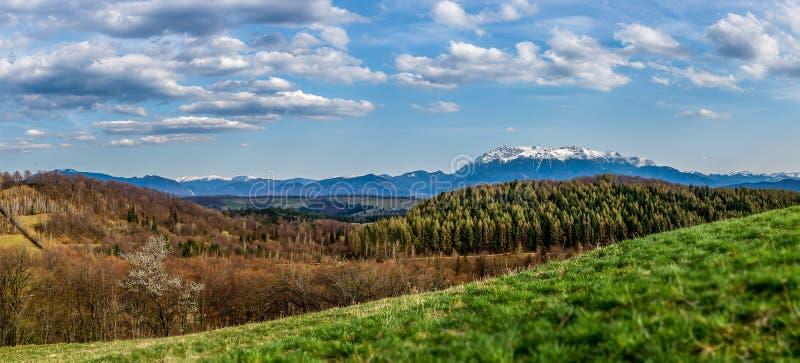 Panoramiczny widok nad Karpacką górą w Transylvania obrazy royalty free