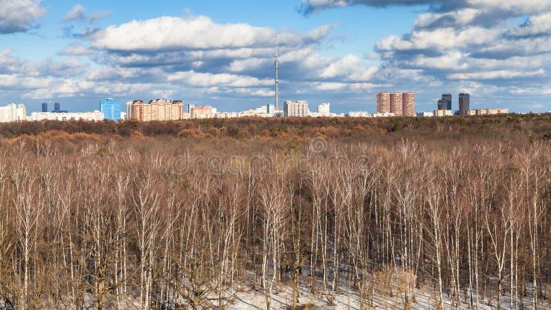 panoramiczny widok nadzy drzewa i ostatni roztapiający śnieg zdjęcie stock