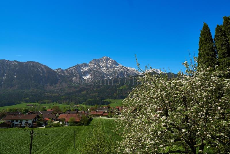 Panoramiczny widok piękny krajobraz w Alps zdjęcia stock