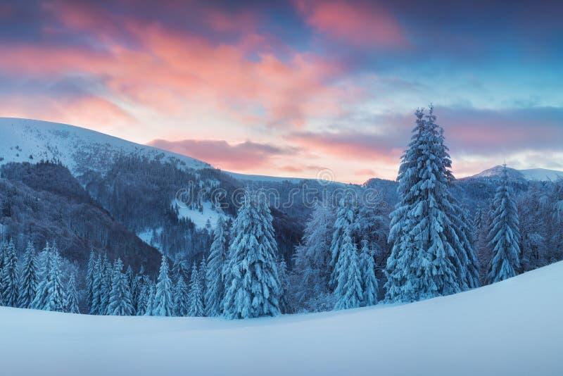 Panoramiczny widok pi?knej zimy krainy cud?w halna sceneria w wiecz?r ?wietle przy zmierzchem G?ry nad chmury Bo?e Narodzenia zdjęcie stock
