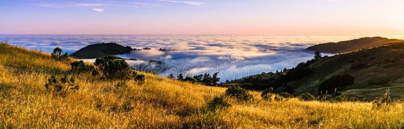 Panoramiczny widok przy zmierzchem zakrywającym w morzu chmury w Santa Cruz górach dolina, San Francisco zatoki teren, Kalifornia zdjęcia royalty free