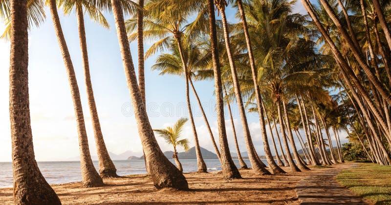 Panoramiczny widok pusta tropikalna plaża fotografia royalty free