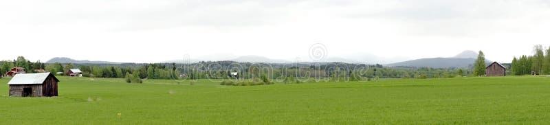 Panoramiczny widok szwedzi krajobraz obraz stock