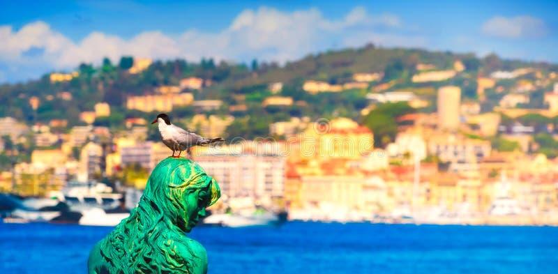 Panoramiczny wizerunek czarny głowiasty seagull Atlante i syrenka obraz stock