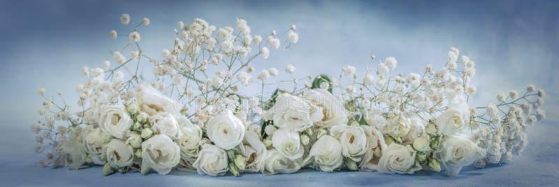 Panoramiczny wizerunek kwiaty zdjęcia stock