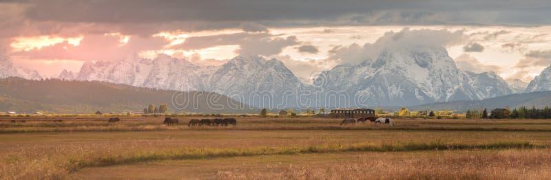 Panoramiczny wschód słońca Wyoming rancho z Uroczystym Teton w tle zdjęcie stock