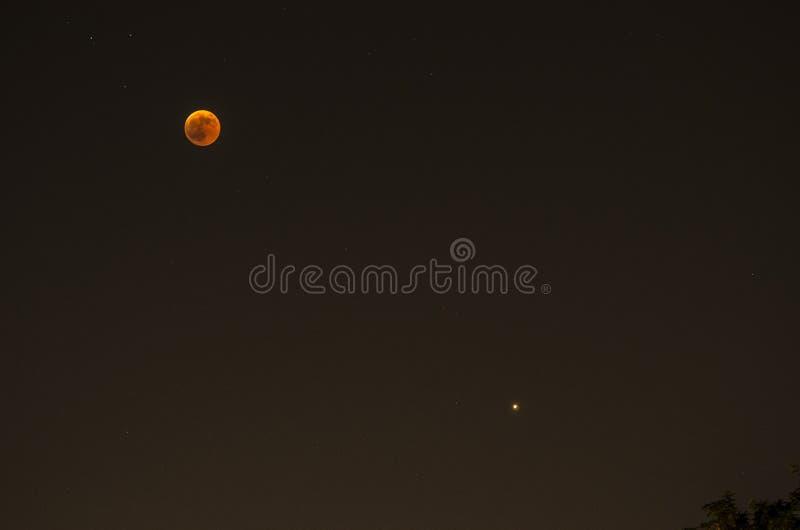 Panoramique regardez du ciel nocturne avec la lune et troublez photographie stock libre de droits