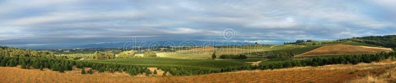 Panoramisch boomlandbouwbedrijf royalty-vrije stock fotografie