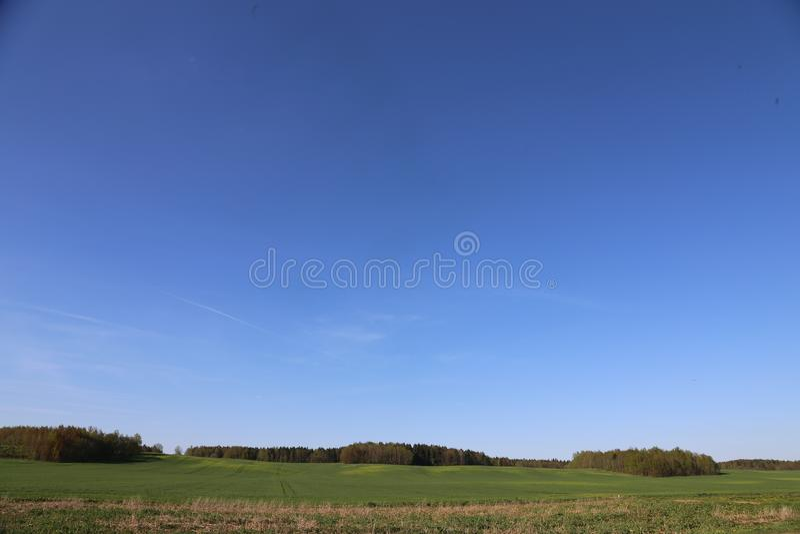 panoramisch groen gebied en blauw hemel en boswit-rusland stock afbeeldingen