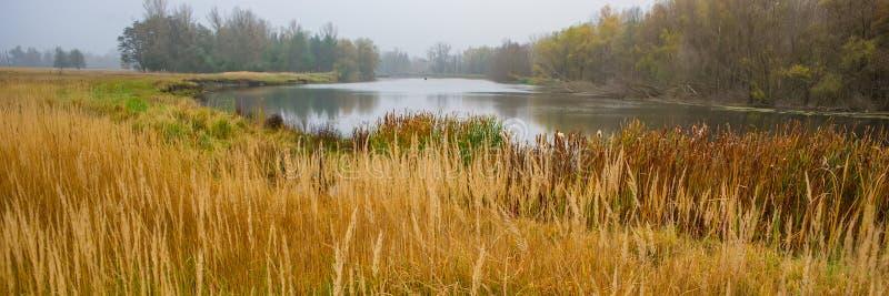 Panoramisch landschap van de kust en de rivier en het bos in bewolkt weer De banner van het Web royalty-vrije stock foto
