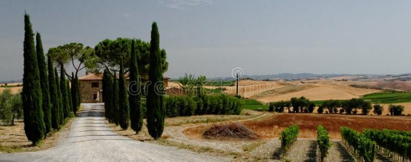 Panoramisch landschap van Toscanië stock afbeeldingen