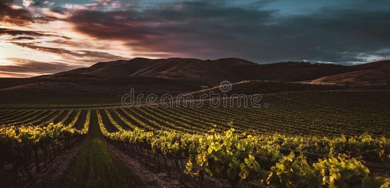 Panoramisch schot van een groot landbouwgebied met groene heuvels en donkere wolken op de achtergrond stock afbeeldingen